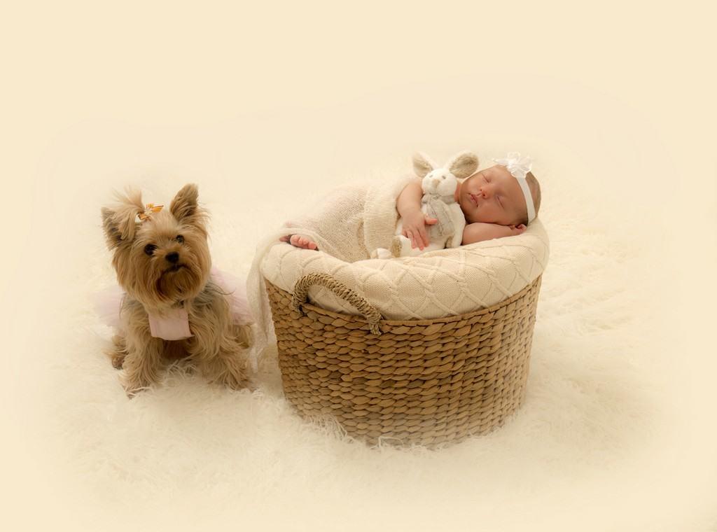 newborn-photography-veronica-16