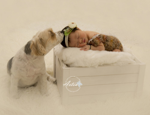 Newborn Photography & Cake Smash – Aria